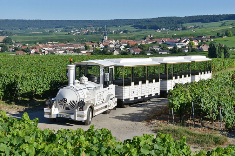 Le Petit Train des Vignobles de Champagne - photo Michel Jolyot (24)
